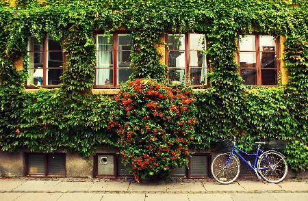 Sfeerimpressie rondreis Denemarken