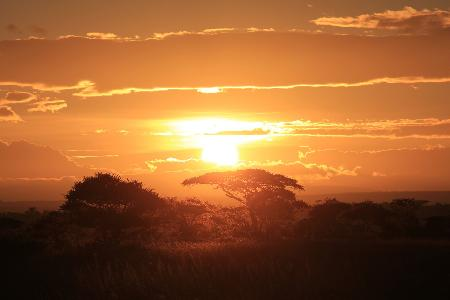 Sfeerimpressie rondreis Tanzania