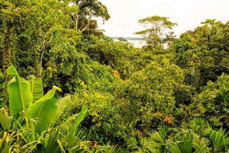 Sfeerimpressie rondreis Ecuador