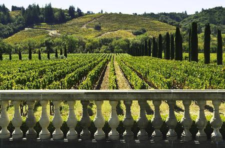 5 verrassende wijnroutes in Europa