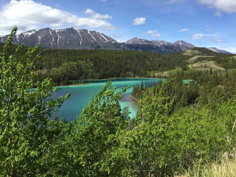 Sfeerimpressie Fly Drive Yukon, Whitehorse met Lufthansa/Condor