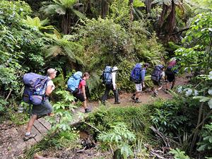 Sfeerimpressie Nieuw Zeeland in een notendop