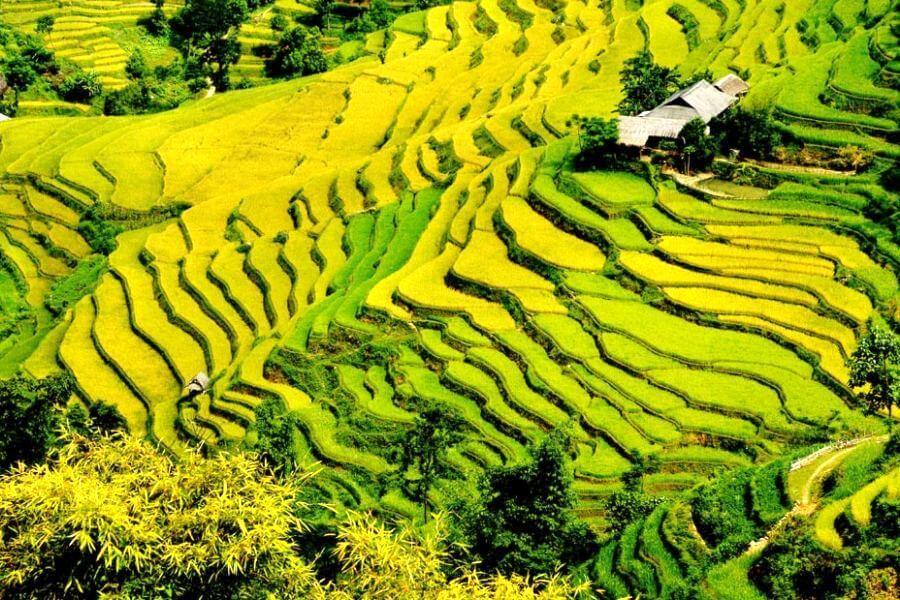 Sfeerimpressie 21-daagse rondreis Vietnam Compleet