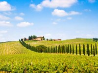 Sfeerimpressie Fly-drive Italië - Toscane Totaal