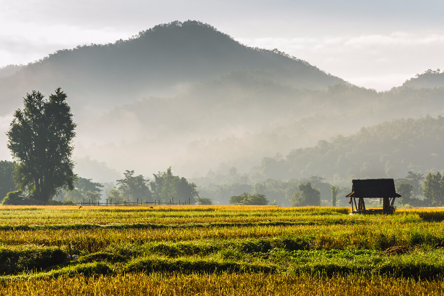 Sfeerimpressie 16-daagse rondreis Centraal- en Noord-Thailand