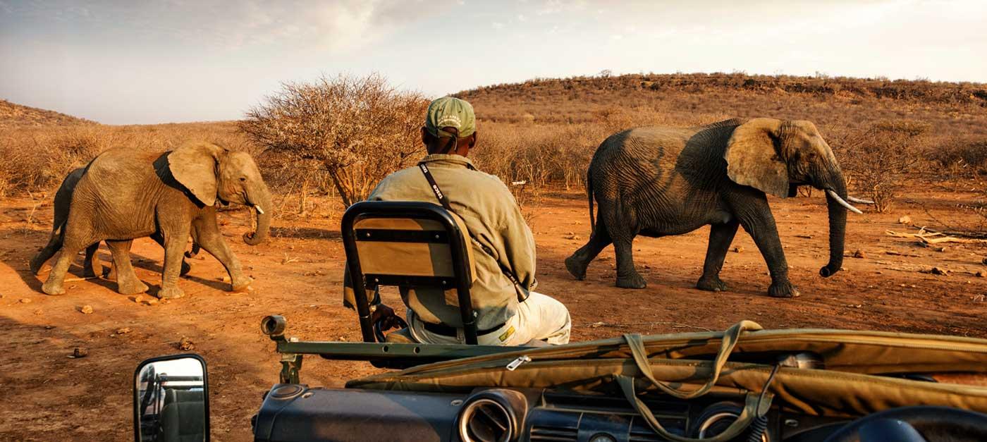 Sfeerimpressie Impressions of Kenya