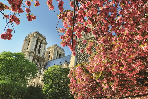 Sfeerimpressie 10-daagse rondreis Parijs en Franse Alpen