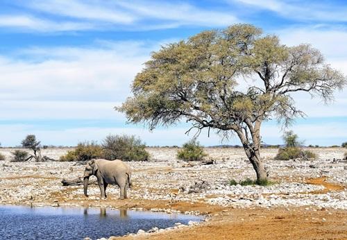 Sfeerimpressie 14-daagse groepsrondreis Weids & Wildrijk Namibië