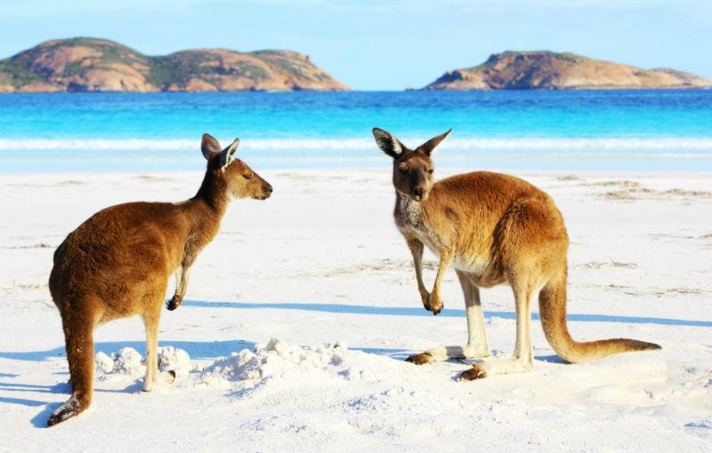 Sfeerimpressie Rondreis WEST-AUSTRALIË - 24 dagen; Van Adelaide naar Broome