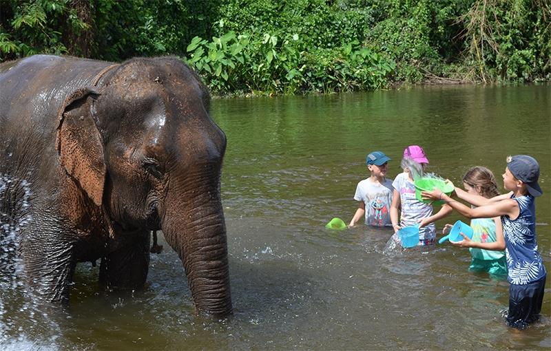 Sfeerimpressie Familiereis ZUID-THAILAND - 15 dagen; Cultuur, natuur én strand