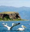 Sfeerimpressie Albanië: Van harte welkom!