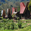Sfeerimpressie Sulawesi en Molukken: Ruig en ongerept Indonesië