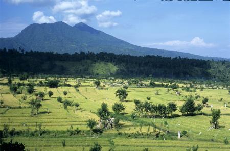 Sfeerimpressie Rondreis Kleine Sunda-eilanden, 21 dagen