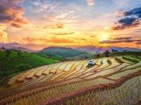 Sfeerimpressie Individuele rondreis Noordelijk Thailand