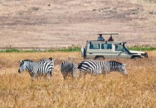 Sfeerimpressie 8-daagse single groepsreis Avontuurlijk Tanzania