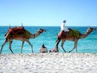 Sfeerimpressie Dubai & Oman