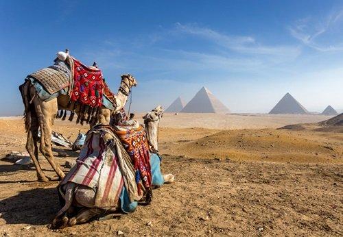 Sfeerimpressie 8-daagse familie groepsreis het land van de Farao's