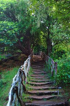Sfeerimpressie 8-daagse rondreis Romantisch Madeira
