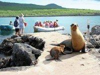Sfeerimpressie Fascinerend Ecuador en Galapagos Eilanden