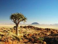 Sfeerimpressie Avontuurlijke Kampeersafari Best of Namibië