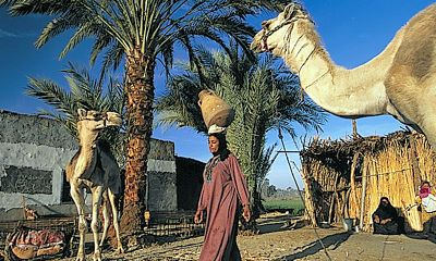 Sfeerimpressie Rondreis Egypte, Nijlvallei & Rode Zee, 14 dagen